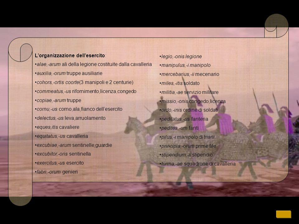 Lorganizzazione dellesercito: alae,-arum ali della legione costituite dalla cavalleria auxilia,-orum truppe ausiliarie cohors,-ortis coorte(3 manipoli e 2 centurie) commeatus,-us rifornimento,licenza,congedo copiae,-arum truppe cornu,-us corno,ala,fianco dellesercito delectus,-us leva,arruolamento eques,itis cavaliere equitatus,-us cavalleria excubiae,-arum sentinelle,guardie excubitor,-oris sentinella exercitus,-us esercito fabri,-orum genieri legio,-onis legione manipulus,-i manipolo mercebarius,-ii mecenario miles,-itis soldato militia,-ae servizio militare missio,-onis congedo,licenza ordo,-inis ordine di soldati peditatus,-us fanteria pedites,-um fanti pilus,-i manipolo di triarii principia,-orum prime file stipendium,-ii stipendio turma,-ae squadrone di cavalleria
