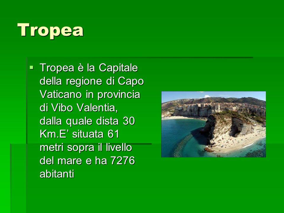 Tropea Tropea è la Capitale della regione di Capo Vaticano in provincia di Vibo Valentia, dalla quale dista 30 Km.E situata 61 metri sopra il livello