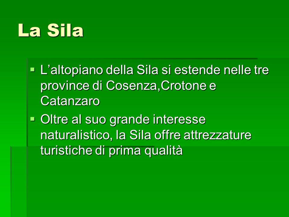 La Sila Laltopiano della Sila si estende nelle tre province di Cosenza,Crotone e Catanzaro Laltopiano della Sila si estende nelle tre province di Cose