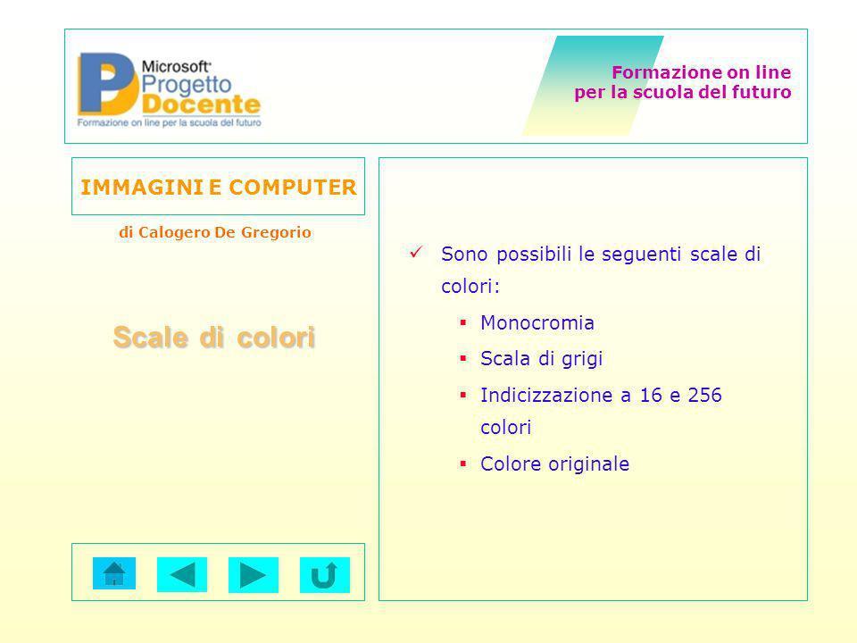 Formazione on line per la scuola del futuro IMMAGINI E COMPUTER di Calogero De Gregorio Sono possibili le seguenti scale di colori: Monocromia Scala d