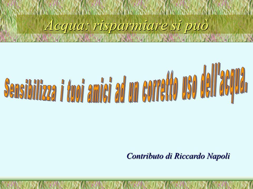 Acqua: risparmiare si può Contributo di Riccardo Napoli