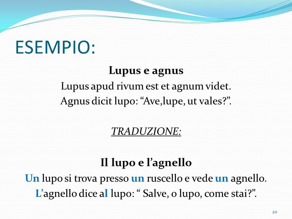 ESEMPIO: Lupus e agnus Lupus apud rivum est et agnum videt.