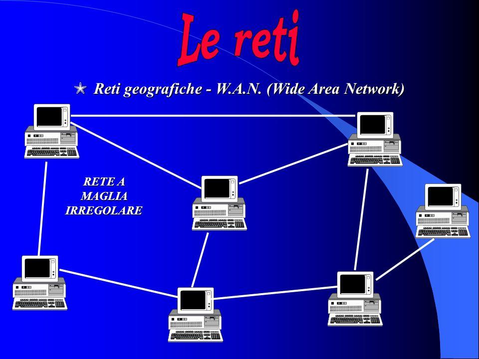 MReti geografiche - W.A.N. (Wide Area Network) RETE A MAGLIA IRREGOLARE