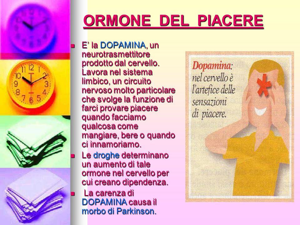 ORMONE DEL PIACERE E la DOPAMINA, un neurotrasmettitore prodotto dal cervello. Lavora nel sistema limbico, un circuito nervoso molto particolare che s