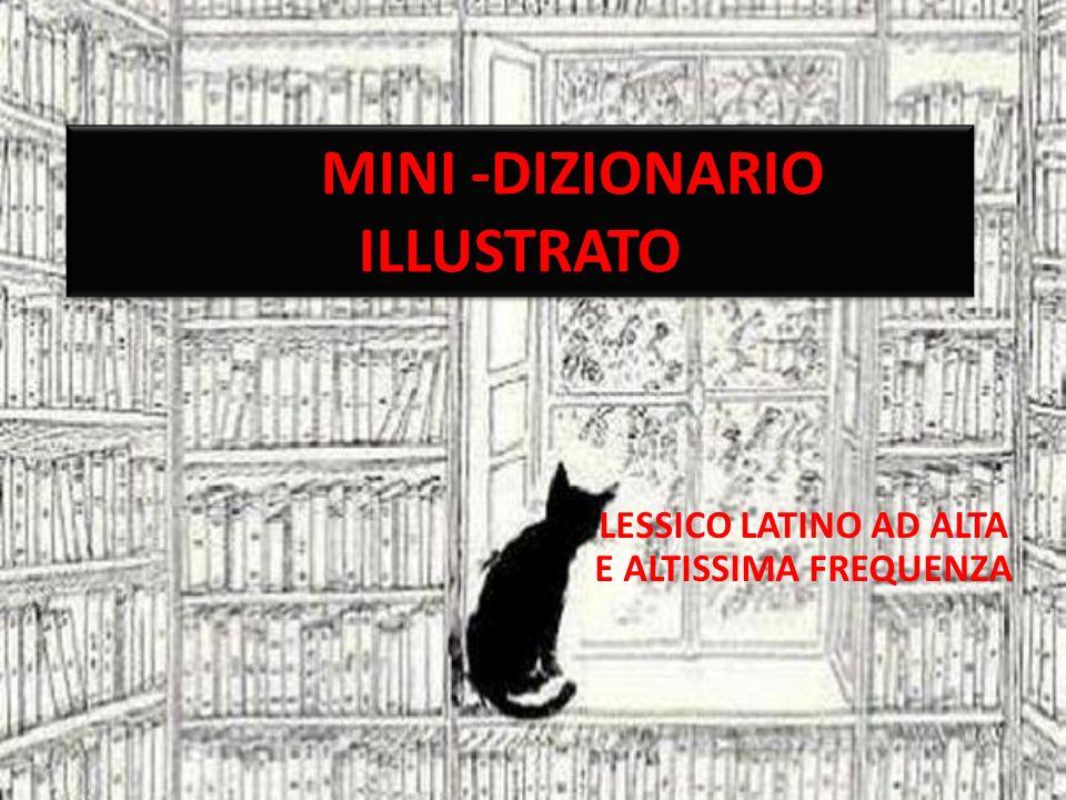 MINI -DIZIONARIO ILLUSTRATO LESSICO LATINO AD ALTA E ALTISSIMA FREQUENZA