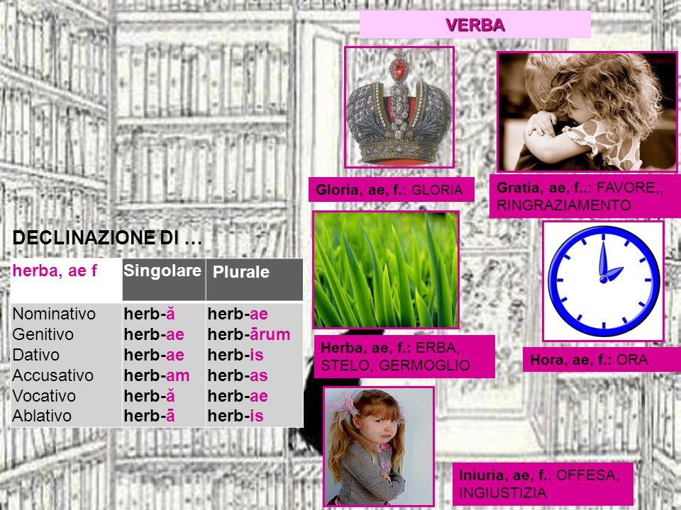DECLINAZIONE DI … herba, ae fSingolare Plurale Nominativo Genitivo Dativo Accusativo Vocativo Ablativo herb-ă herb-ae herb-ae herb-am herb-ă herb-ā he