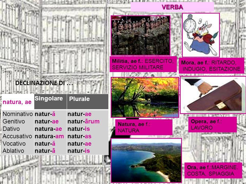 DECLINAZIONE DI … natura, ae Singolare Plurale Nominativo Genitivo Dativo Accusativo Vocativo Ablativo natur-ă natur-ae natura-ae natura-am natur-ă na