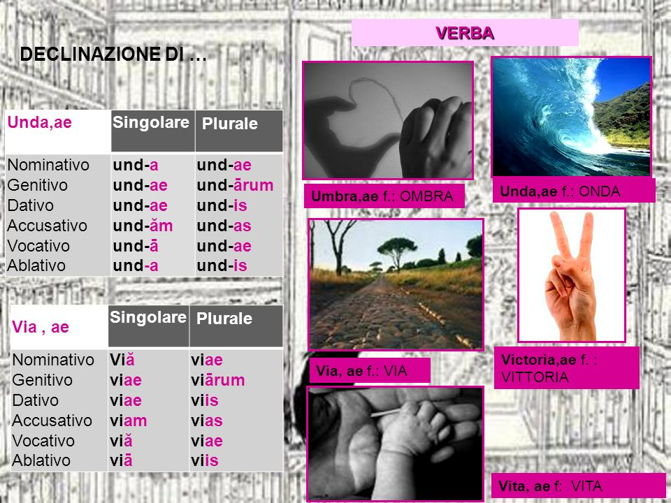DECLINAZIONE DI … Unda,aeSingolare Plurale Nominativo Genitivo Dativo Accusativo Vocativo Ablativo und-a und-ae und-ae und-ăm und-ā und-a und-ae und-ā