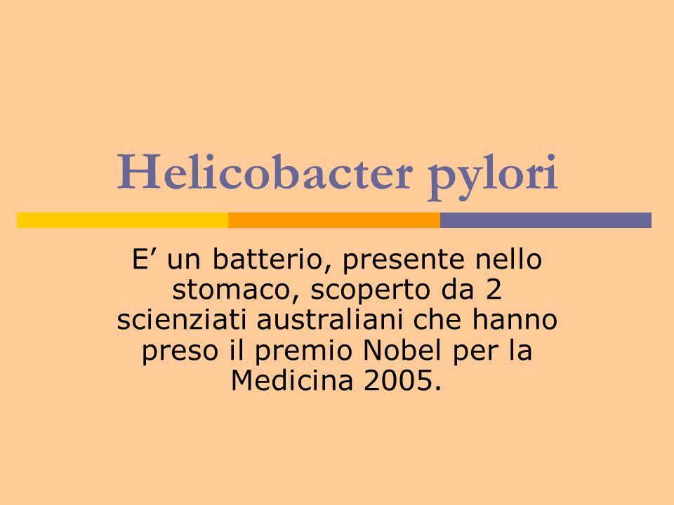 Helicobacter pylori E un batterio, presente nello stomaco, scoperto da 2 scienziati australiani che hanno preso il premio Nobel per la Medicina 2005.
