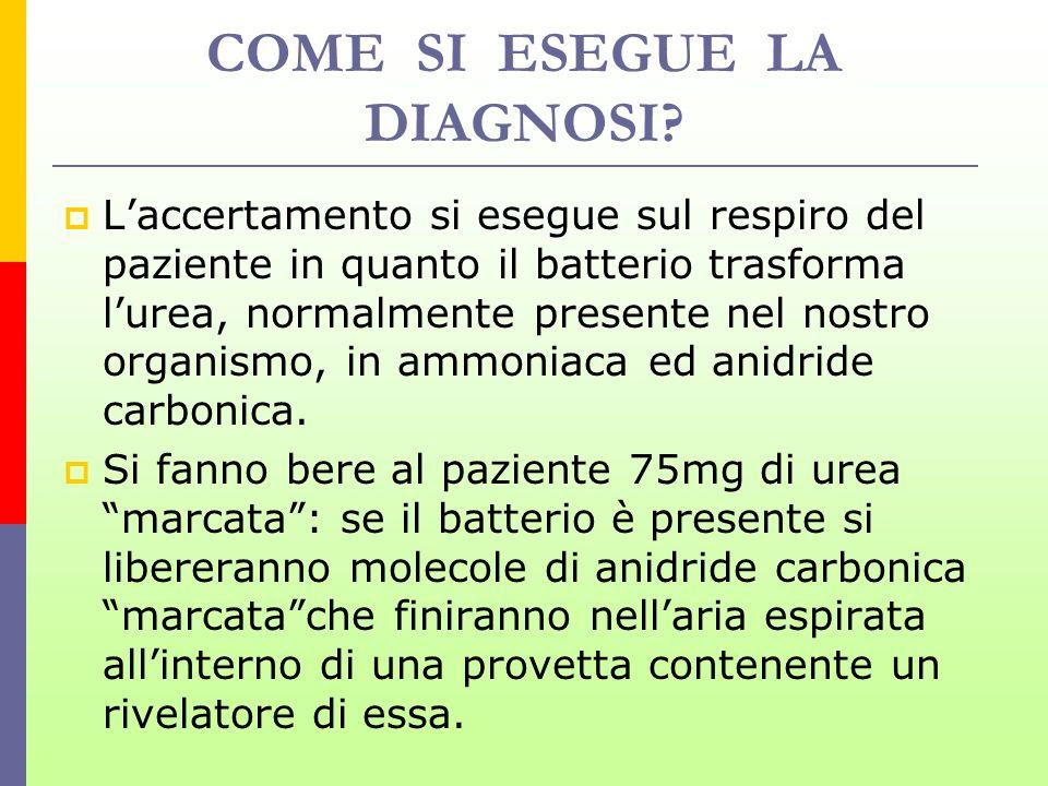 COME SI ESEGUE LA DIAGNOSI? Laccertamento si esegue sul respiro del paziente in quanto il batterio trasforma lurea, normalmente presente nel nostro or