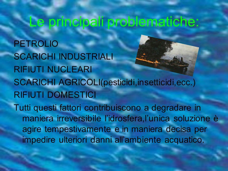Le principali problematiche: PETROLIO SCARICHI INDUSTRIALI RIFIUTI NUCLEARI SCARICHI AGRICOLI(pesticidi,insetticidi,ecc.) RIFIUTI DOMESTICI Tutti ques