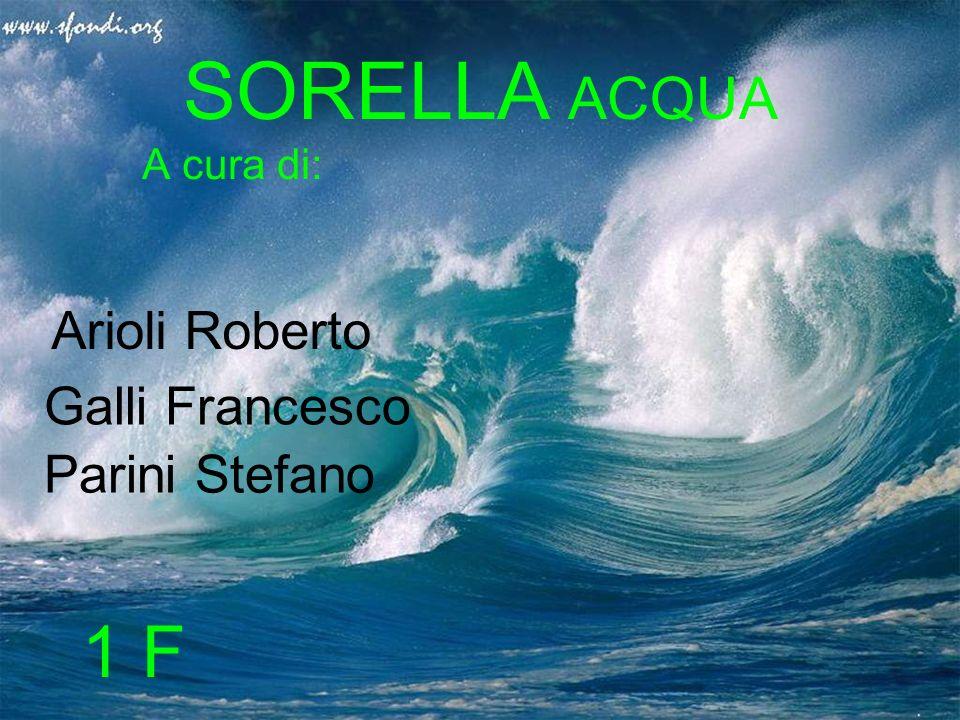SORELLA ACQUA A cura di: Arioli Roberto Galli Francesco Parini Stefano 1 F