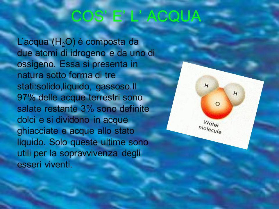 COS E L ACQUA Lacqua (H 2 O) è composta da due atomi di idrogeno e da uno di ossigeno. Essa si presenta in natura sotto forma di tre stati:solido,liqu