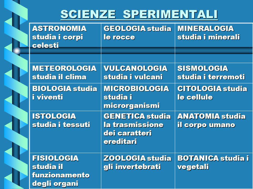 SCIENZE SPERIMENTALI ASTRONOMIA studia i corpi celesti GEOLOGIA studia le rocce MINERALOGIA studia i minerali METEOROLOGIA studia il clima VULCANOLOGIA studia i vulcani SISMOLOGIA studia i terremoti BIOLOGIA studia i viventi MICROBIOLOGIA studia i microrganismi CITOLOGIA studia le cellule ISTOLOGIA studia i tessuti GENETICA studia la trasmissione dei caratteri ereditari ANATOMIA studia il corpo umano FISIOLOGIA studia il funzionamento degli organi ZOOLOGIA studia gli invertebrati BOTANICA studia i vegetali