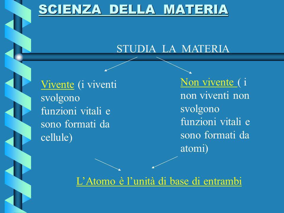 SCIENZA DELLA MATERIA SCIENZA DELLA MATERIA STUDIA LA MATERIA Vivente (i viventi svolgono funzioni vitali e sono formati da cellule) Non vivente ( i non viventi non svolgono funzioni vitali e sono formati da atomi) LAtomo è lunità di base di entrambi
