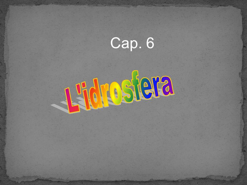 Cap. 6