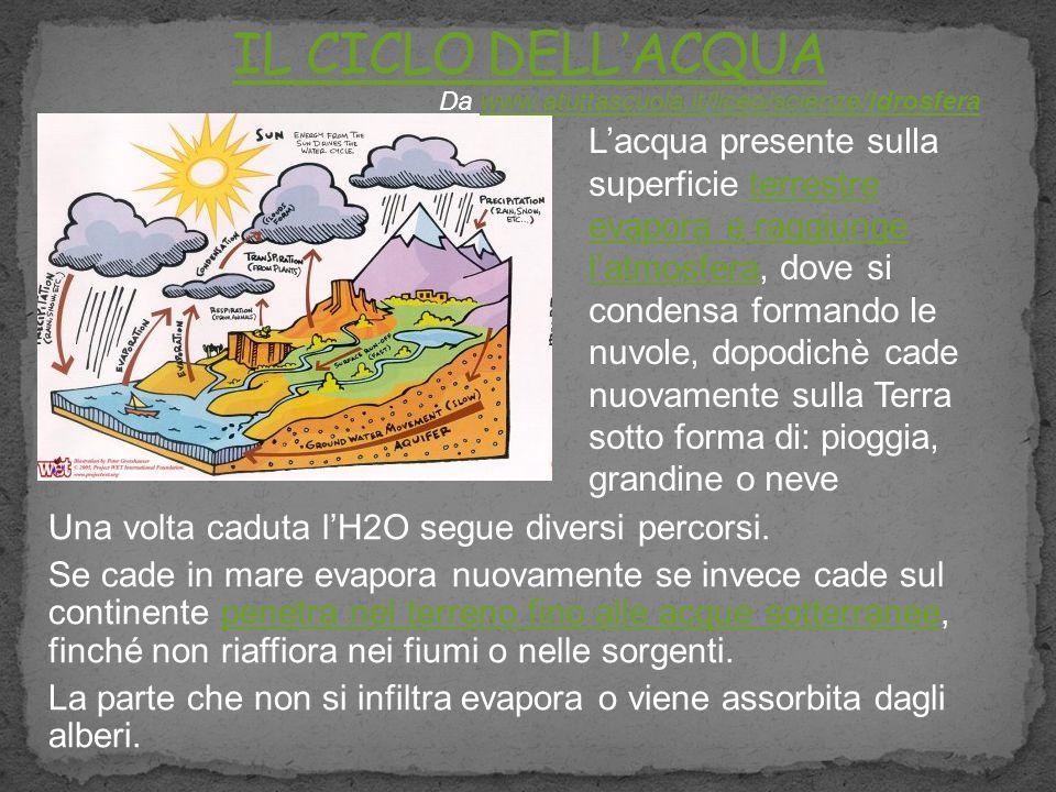 Una volta caduta lH2O segue diversi percorsi. Se cade in mare evapora nuovamente se invece cade sul continente penetra nel terreno fino alle acque sot