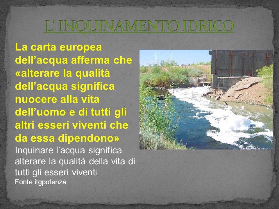 La carta europea dellacqua afferma che «alterare la qualità dellacqua significa nuocere alla vita delluomo e di tutti gli altri esseri viventi che da