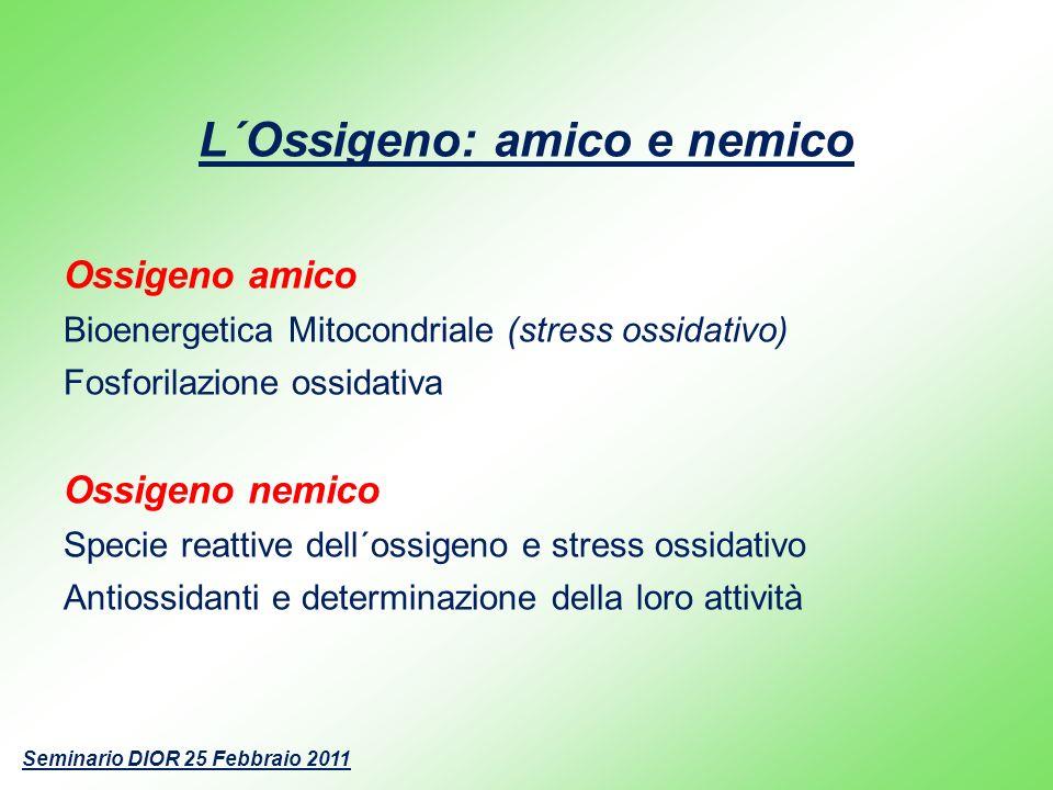 L´Ossigeno: amico e nemico Ossigeno amico Bioenergetica Mitocondriale (stress ossidativo) Fosforilazione ossidativa Ossigeno nemico Specie reattive de