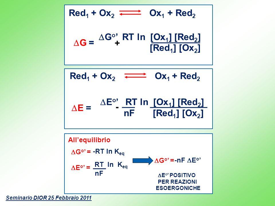 Allequilibrio -RT ln K eq G o = nF E o = RT ln K eq E o POSITIVO PER REAZIONI ESOERGONICHE -nF E o G o = Seminario DIOR 25 Febbraio 2011 G o RT ln [Ox