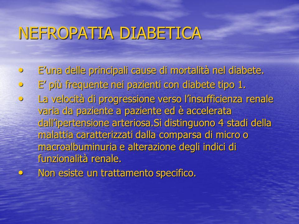 NEFROPATIA DIABETICA Euna delle principali cause di mortalità nel diabete. Euna delle principali cause di mortalità nel diabete. E più frequente nei p