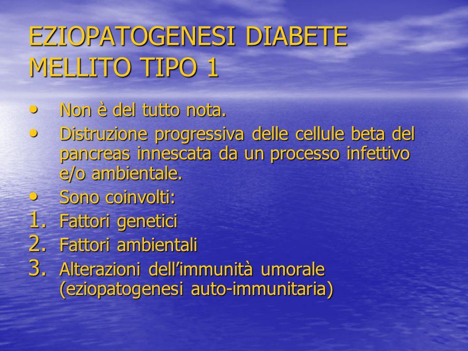 EZIOPATOGENESI DIABETE MELLITO TIPO 1 Non è del tutto nota. Non è del tutto nota. Distruzione progressiva delle cellule beta del pancreas innescata da