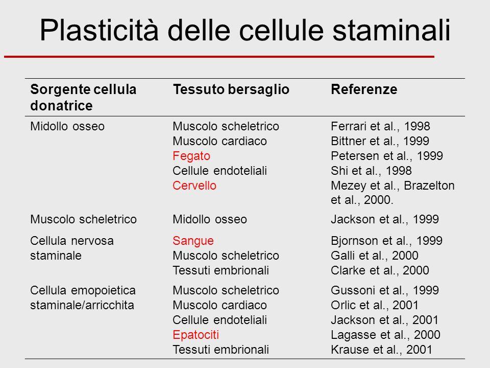 Sorgente cellula donatrice Tessuto bersaglioReferenze Midollo osseoMuscolo scheletrico Muscolo cardiaco Fegato Cellule endoteliali Cervello Ferrari et