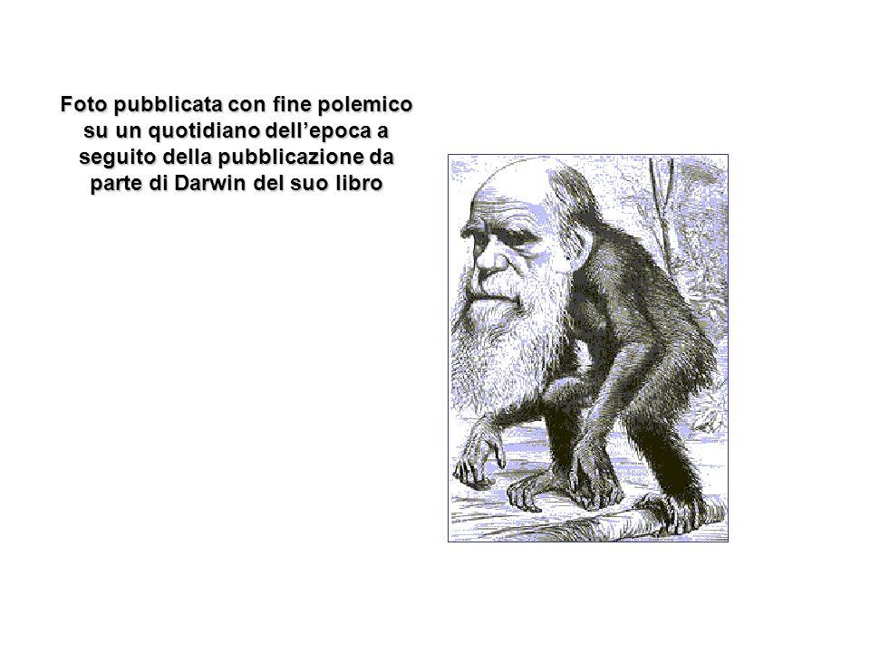 Foto pubblicata con fine polemico su un quotidiano dellepoca a seguito della pubblicazione da parte di Darwin del suo libro