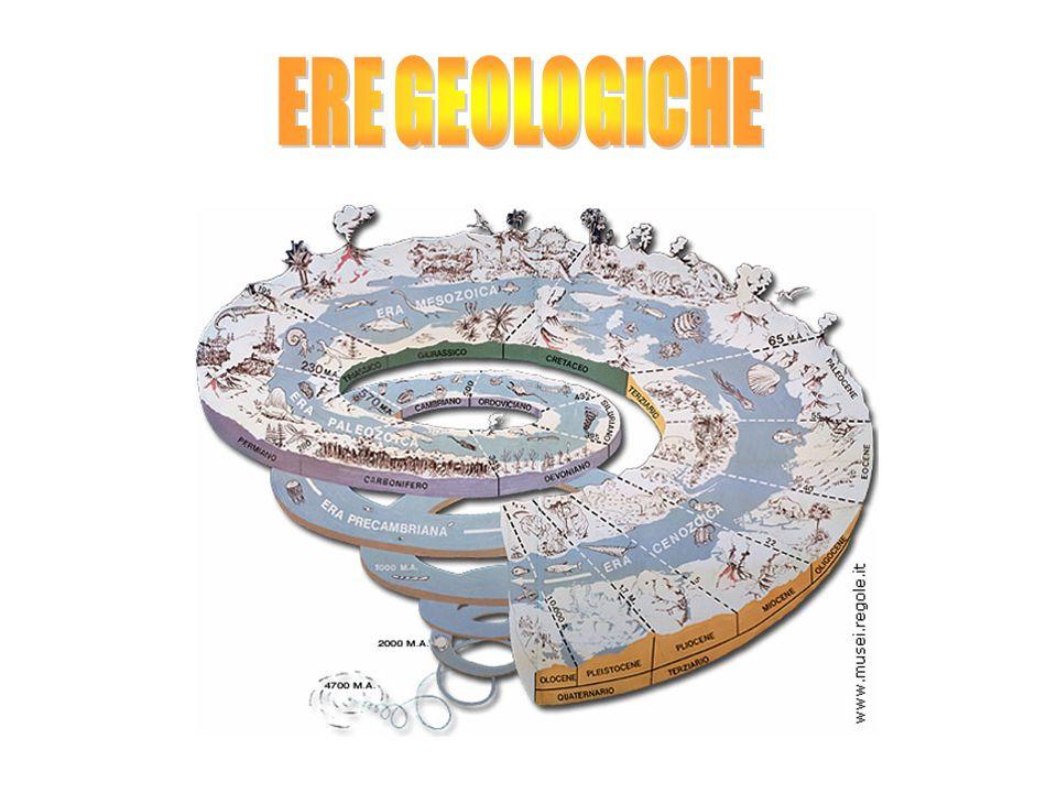 Evoluzione chimica, primi procarioti, fotosintesi Primi eucariori epluricellulari a corpo molle archeozoico Evoluzione degli invertebrati prima marini e poi terrestri, primi vertebrati, pesci e anfibi Massimo sviluppo dei rettili, gimnosperme, rettili giganti, primi uccelli e primi mammiferi Scomparsa dei dinosauri, affermazione dei mammiferi, uccelli e angiosperme, comparsa dei primi ominidi Comparsa delluomo