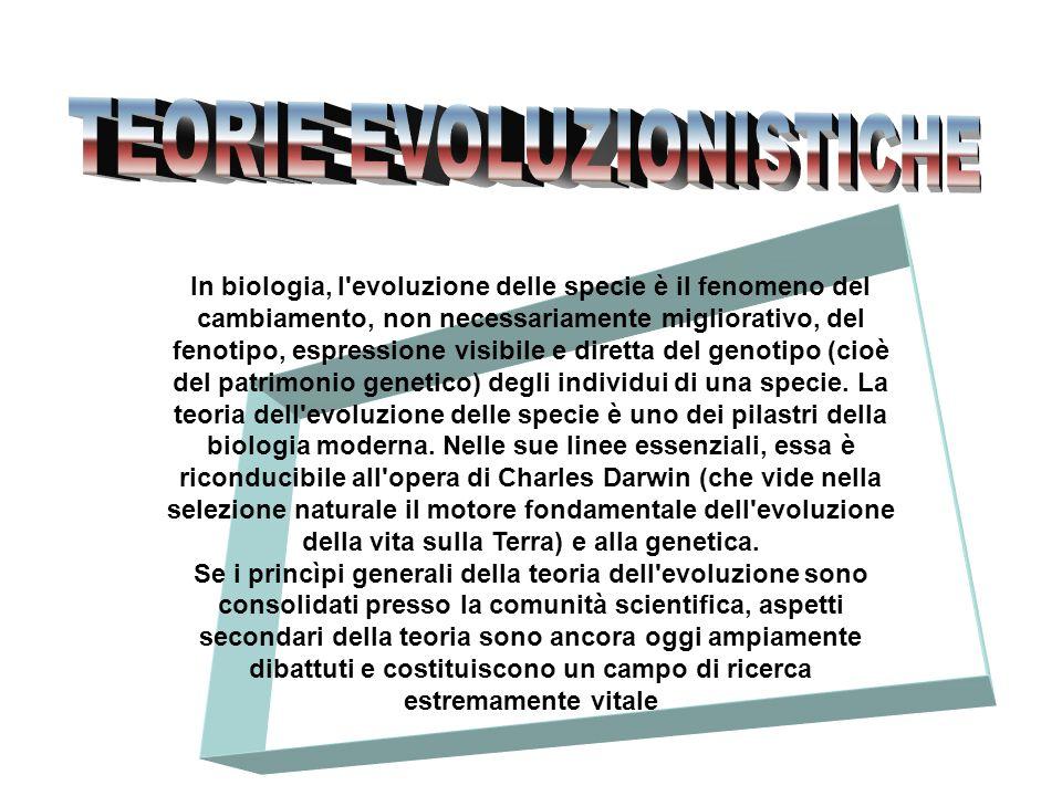 In biologia, l'evoluzione delle specie è il fenomeno del cambiamento, non necessariamente migliorativo, del fenotipo, espressione visibile e diretta d