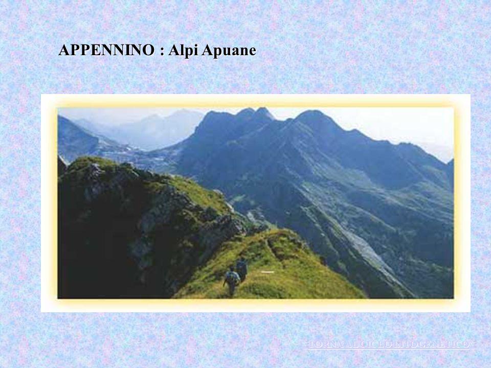 APPENNINO : Alpi Apuane TORNA AL CICLO LITOGENETICO TORNA AL CICLO LITOGENETICO