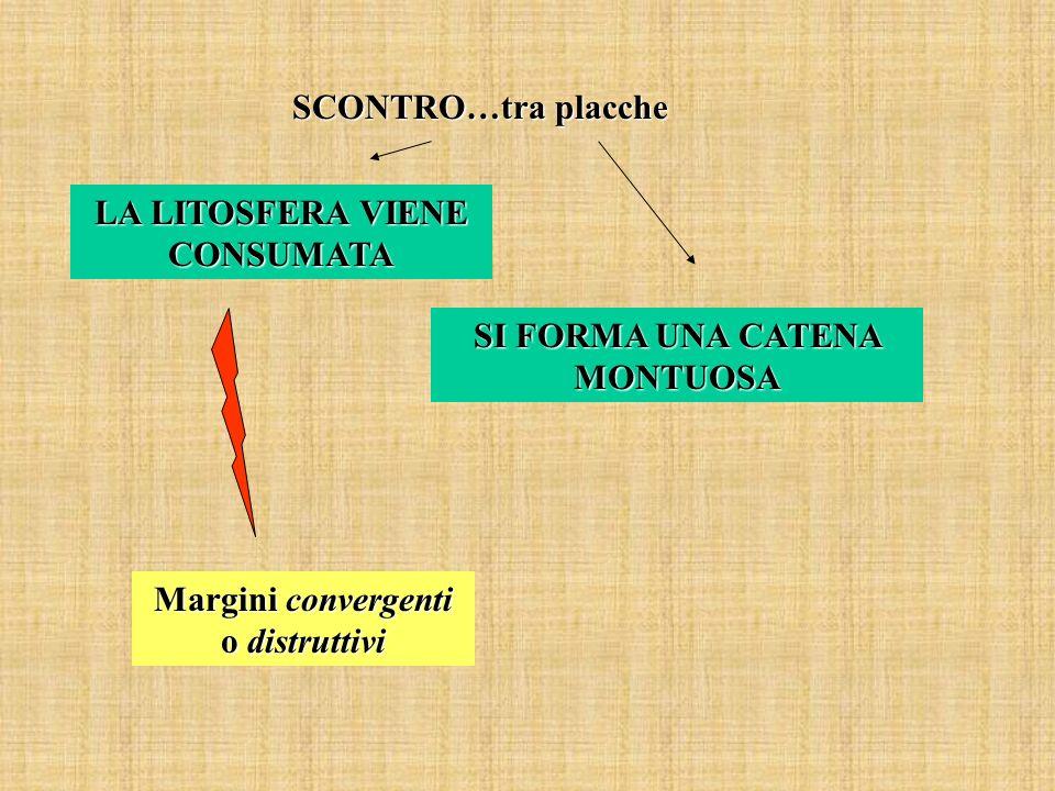 SCONTRO…tra placche LA LITOSFERA VIENE CONSUMATA SI FORMA UNA CATENA MONTUOSA Margini convergenti o distruttivi