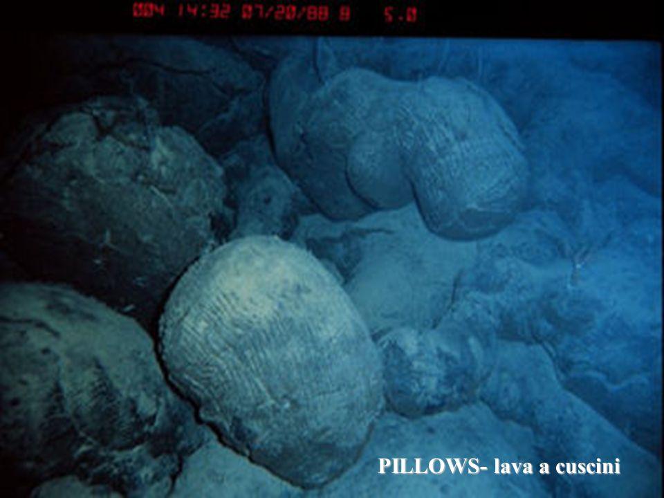 PILLOWS- lava a cuscini