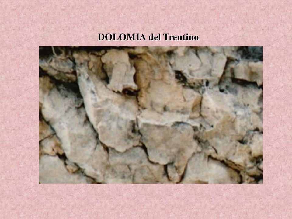 DOLOMIA del Trentino