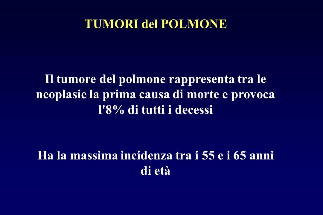 Il tumore del polmone rappresenta tra le neoplasie la prima causa di morte e provoca l'8% di tutti i decessi Ha la massima incidenza tra i 55 e i 65 a
