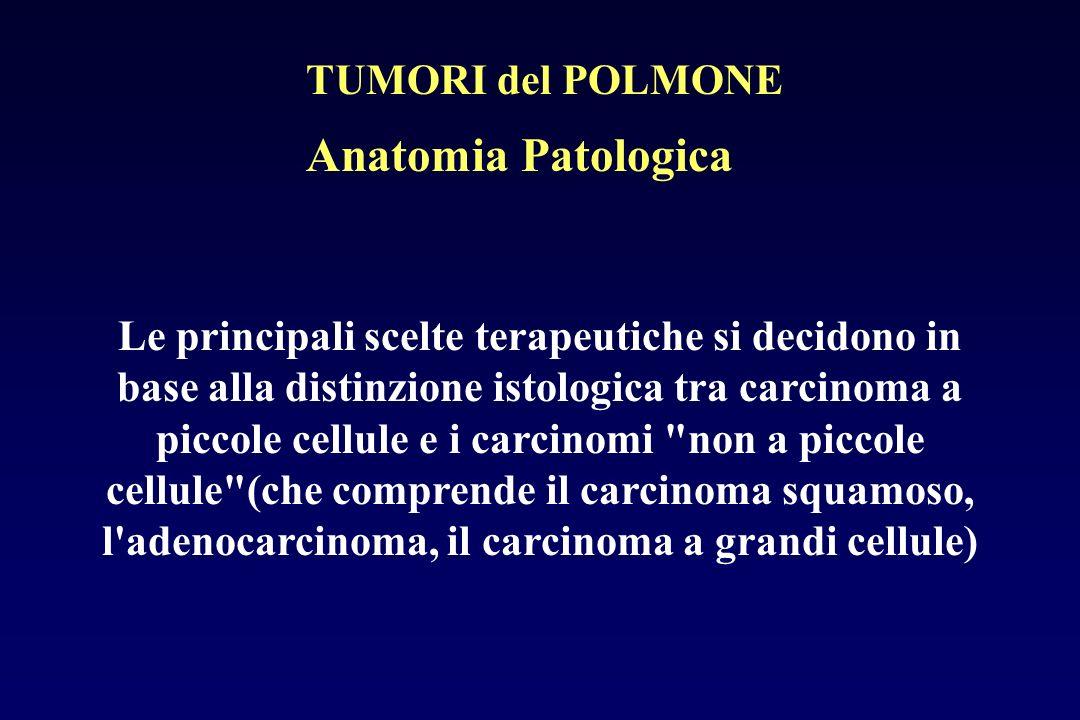 Anatomia Patologica Le principali scelte terapeutiche si decidono in base alla distinzione istologica tra carcinoma a piccole cellule e i carcinomi