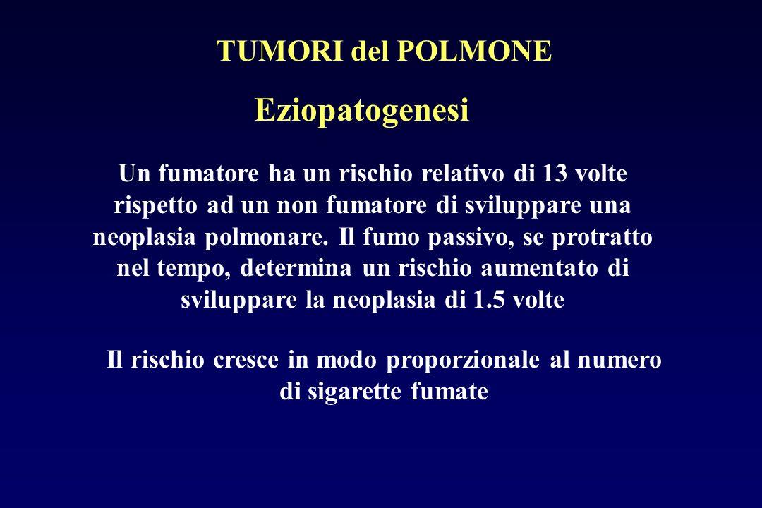 Eziopatogenesi Un fumatore ha un rischio relativo di 13 volte rispetto ad un non fumatore di sviluppare una neoplasia polmonare. Il fumo passivo, se p
