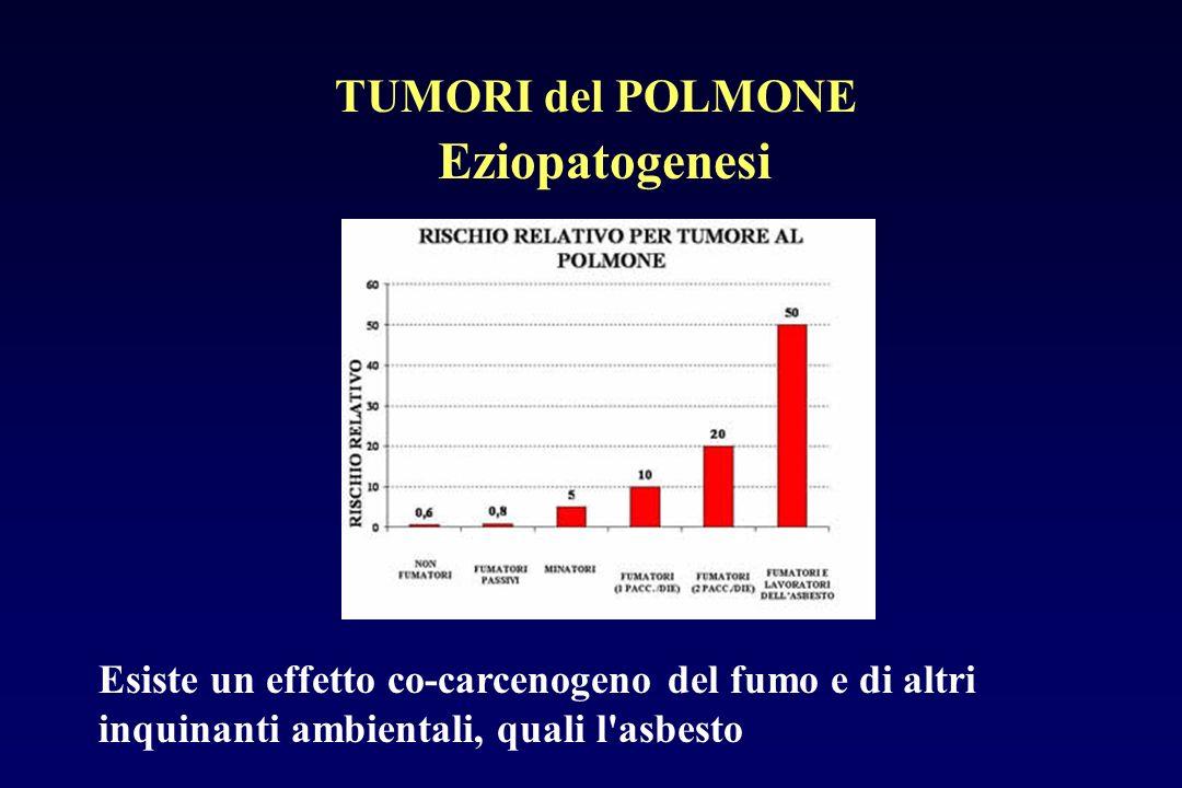 Eziopatogenesi Esiste un effetto co-carcenogeno del fumo e di altri inquinanti ambientali, quali l'asbesto TUMORI del POLMONE