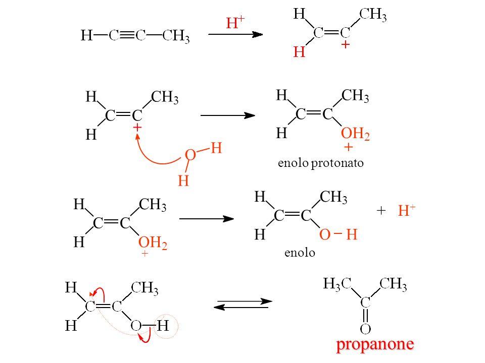 CC H H CH 3 + O H H CC H H CH 3 OH 2 + enolo protonato + CC H H CH 3 OH 2 CC H H CH 3 OH + H + enolo propanone