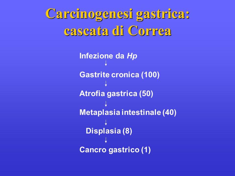 Infezione da Hp Gastrite cronica (100) Atrofia gastrica (50) Metaplasia intestinale (40) Displasia (8) Cancro gastrico (1) Carcinogenesi gastrica: cas