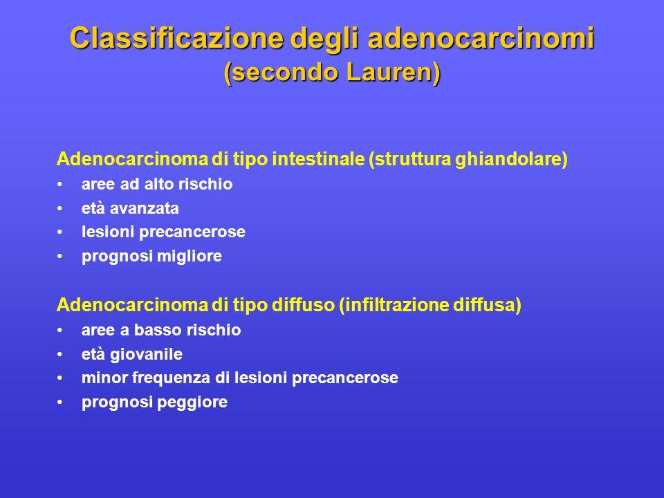 Adenocarcinoma di tipo intestinale (struttura ghiandolare) aree ad alto rischio età avanzata lesioni precancerose prognosi migliore Adenocarcinoma di