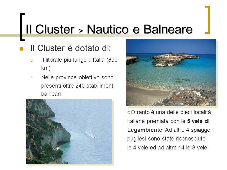 Il Cluster è dotato di: Il litorale più lungo dItalia (850 km) Nelle province obiettivo sono presenti oltre 240 stabilimenti balneari Otranto è una de