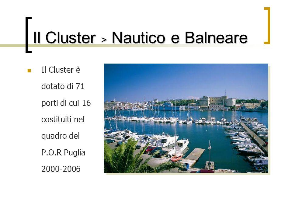 Il Cluster > Nautico e Balneare Il Cluster è dotato di 71 porti di cui 16 costituiti nel quadro del P.O.R Puglia 2000-2006