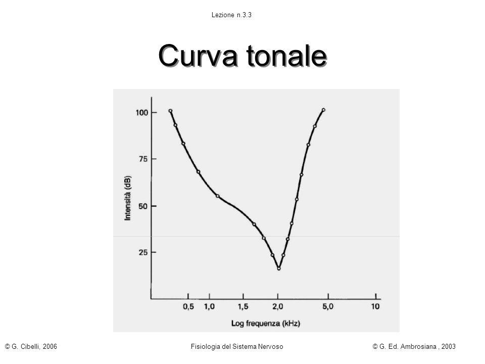 Curva tonale Lezione n.3.3 © G. Cibelli, 2006 Fisiologia del Sistema Nervoso© G. Ed. Ambrosiana, 2003