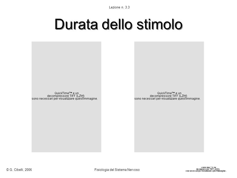 Durata dello stimolo © G. Cibelli, 2006 Fisiologia del Sistema Nervoso Lezione n. 3.3