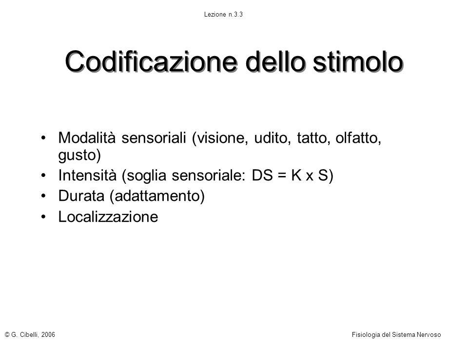 © G. Cibelli, 2006Fisiologia del Sistema Nervoso Lezione n.3.3 Codificazione dello stimolo Modalità sensoriali (visione, udito, tatto, olfatto, gusto)