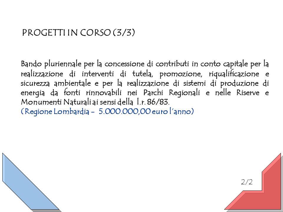 PROGETTI IN CORSO (3/3) Bando pluriennale per la concessione di contributi in conto capitale per la realizzazione di interventi di tutela, promozione,