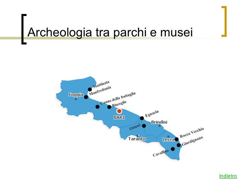 Archeologia tra parchi e musei Mattinata Manfredonia Canne della battaglia Egnazia Bisceglie Cavallino Giurdignano Rocca Vecchia Ostuni Indietro