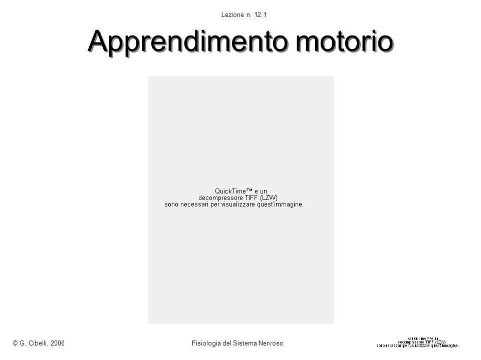 Apprendimento motorio © G. Cibelli, 2006 Fisiologia del Sistema Nervoso Lezione n. 12.1