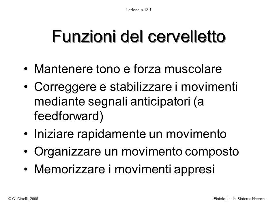 Funzioni del cervelletto Mantenere tono e forza muscolare Correggere e stabilizzare i movimenti mediante segnali anticipatori (a feedforward) Iniziare